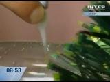 Как сделать елку из бутылки и конфет. http://vk.com/publicistorii
